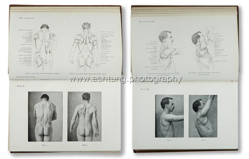Arthur_Thomson_Handbook_of_anatomy_for_art_students_Oxford_at_the_Clarendon_press_1896_p01