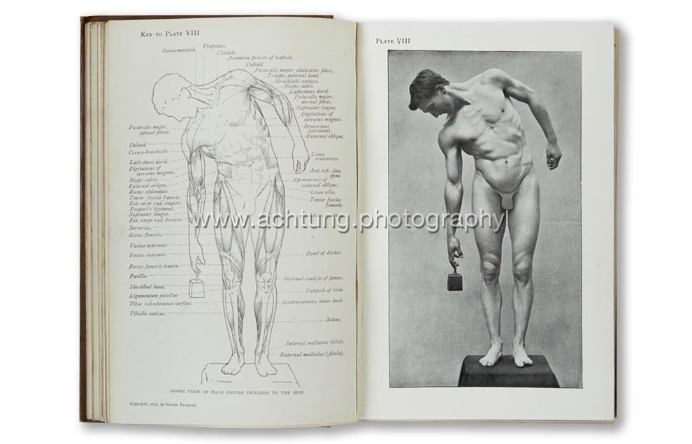 Arthur Thomson, Handbook of anatomy for art students, 1896