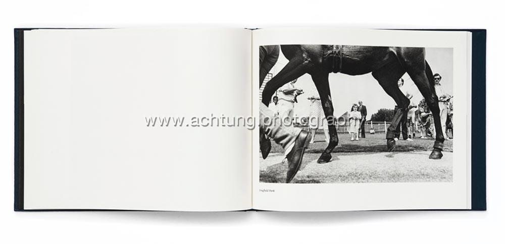 Norman_Mauskopf_Dark_Horses_08