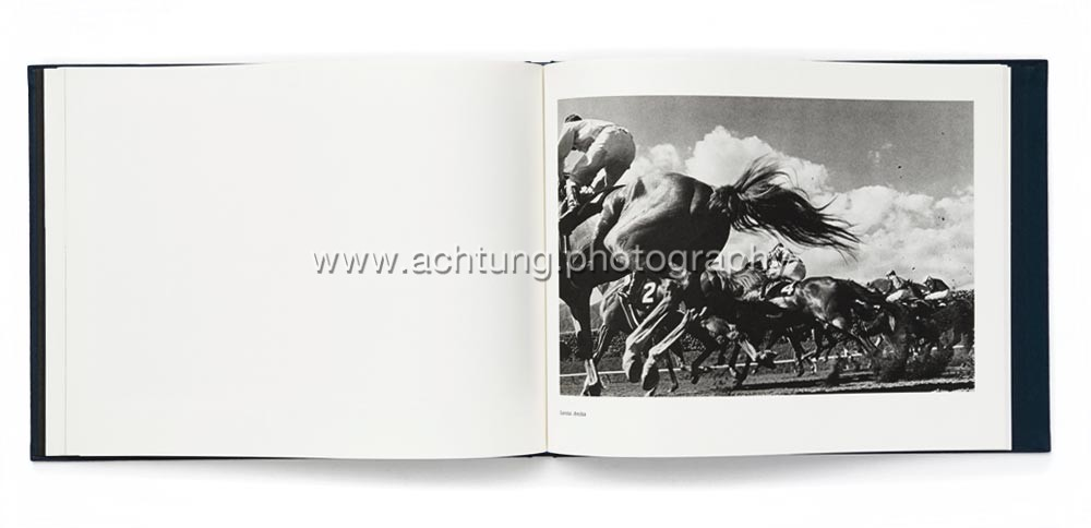 Norman_Mauskopf_Dark_Horses_09