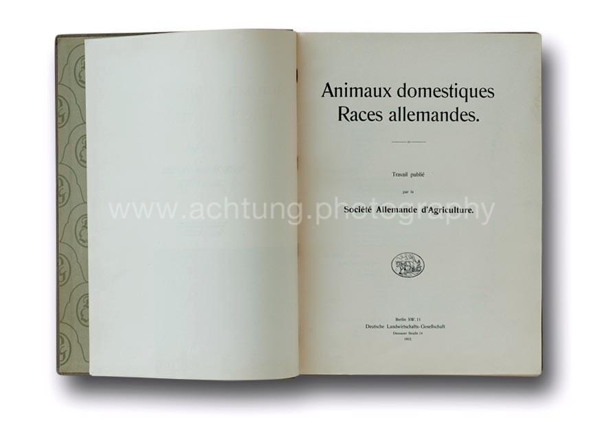 Animaux_Domestiques_Races_Allemandes-1912_02