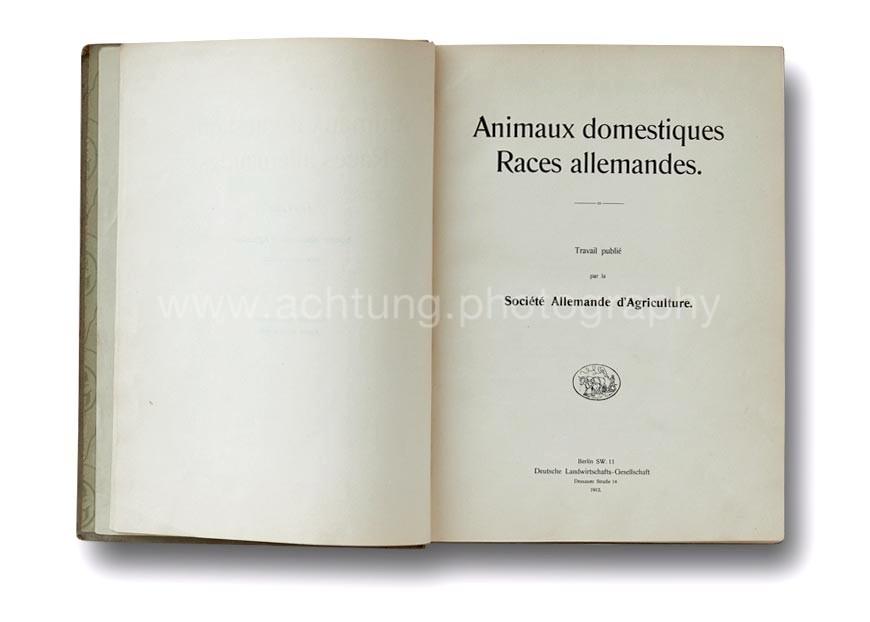Animaux_Domestiques_Races_Allemandes-Roumani_1912_00