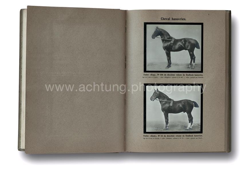Animaux_Domestiques_Races_Allemandes-Roumani_1912_01