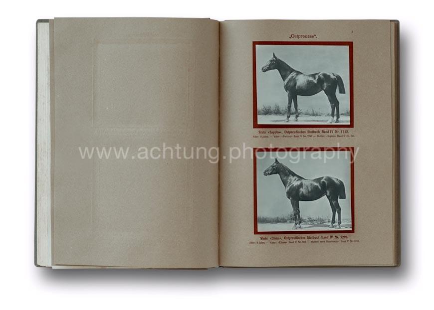 Deutsche_Tierrassen_1912_03