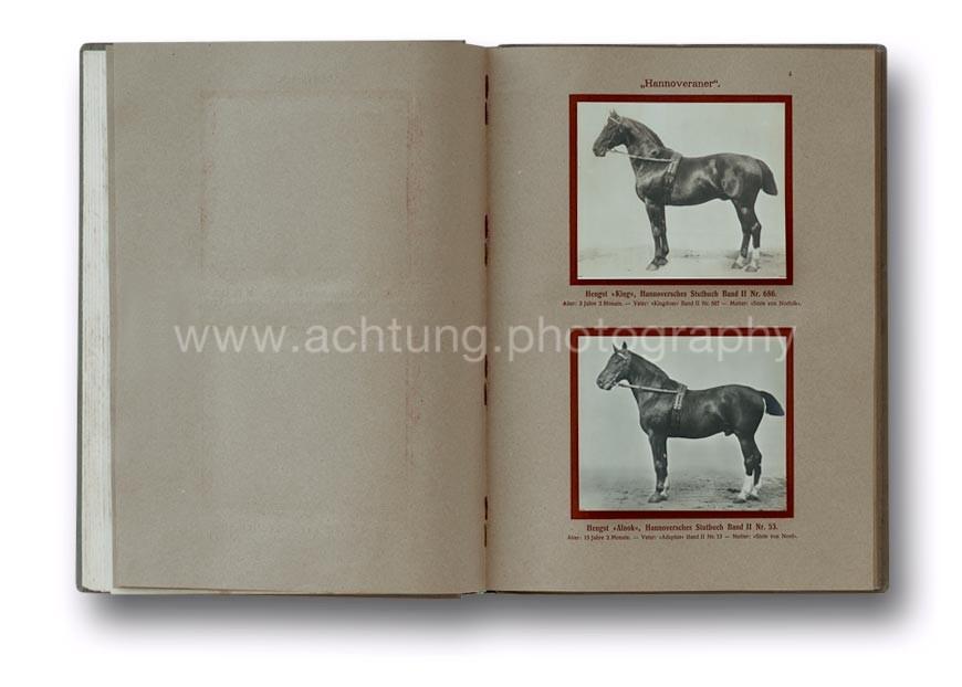 Deutsche_Tierrassen_1912_04