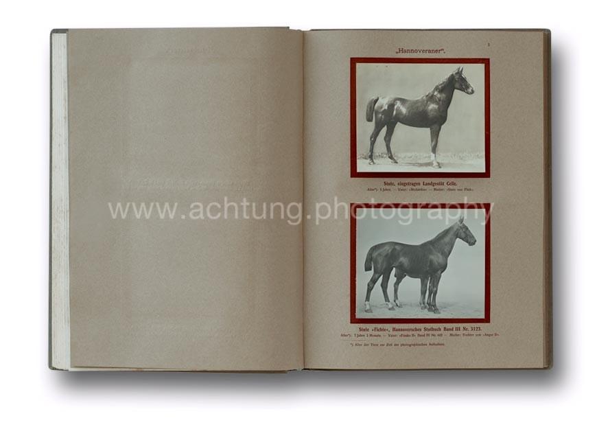 Deutsche_Tierrassen_1912_05