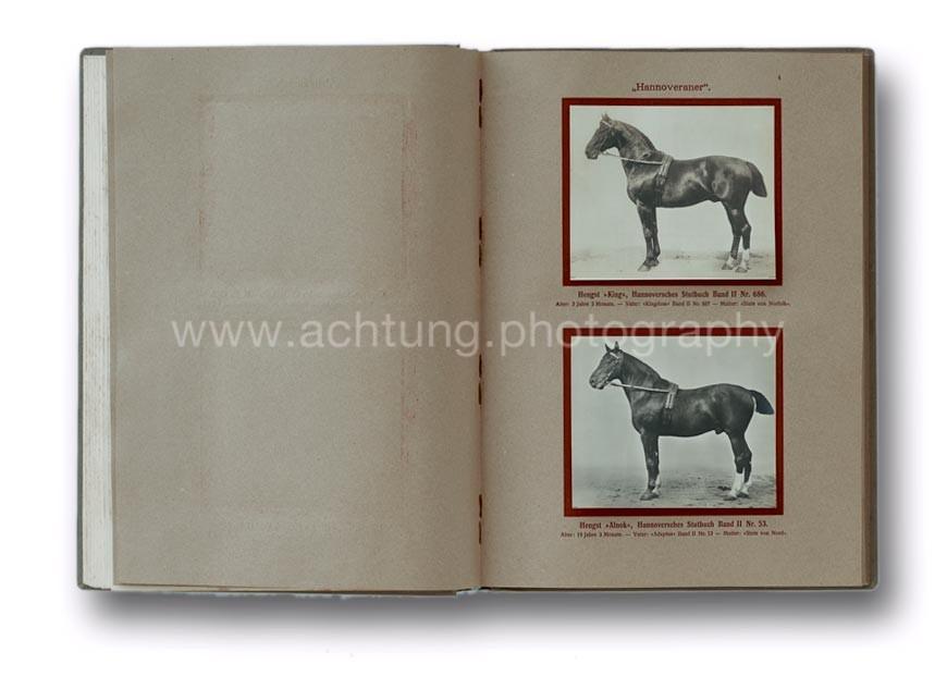Deutsche_Tierrassen_1912_08