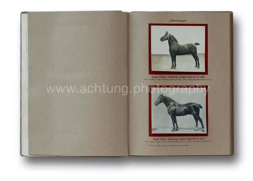 Deutsche_Tierrassen_1912_10