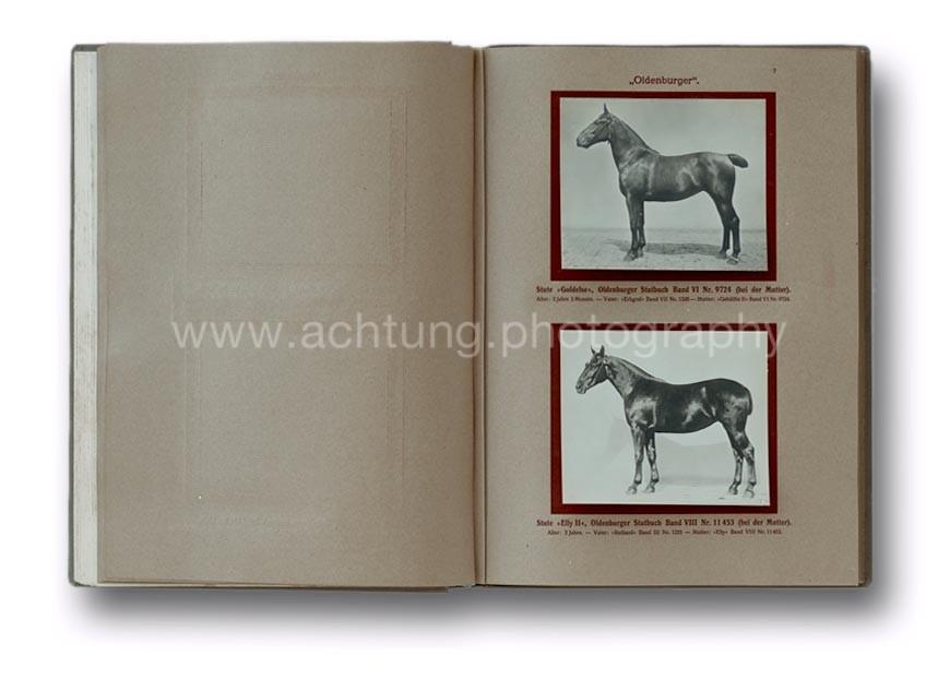Deutsche_Tierrassen_1912_11