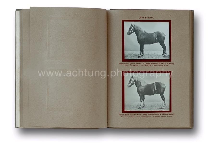 Deutsche_Tierrassen_1912_18