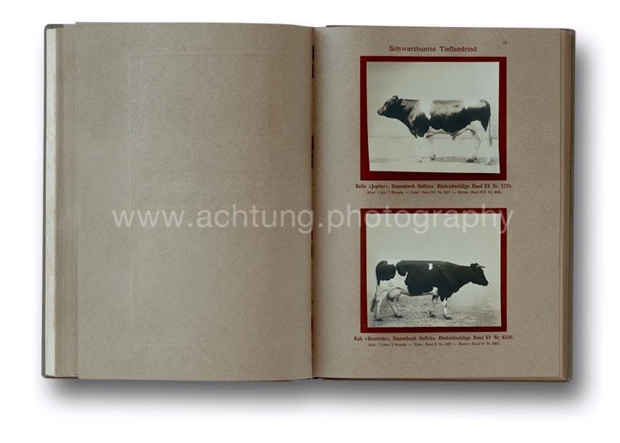 Deutsche_Tierrassen_1912_20